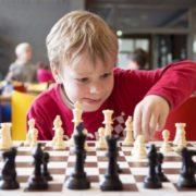 ОП: внедрить шахматы в школах России можно за два-три года